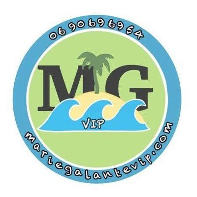 logo MGVIP 2 1