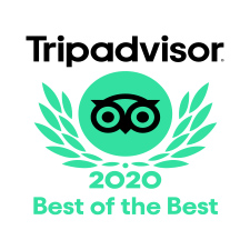 TRIP ADVISOR 2020